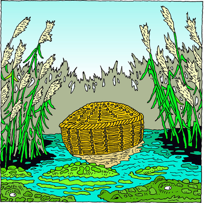 Image: She took for him an ark of bulrushes and laid it in the.