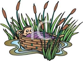 Baby Moses in a Basket Stuck in Some Bulrushes.