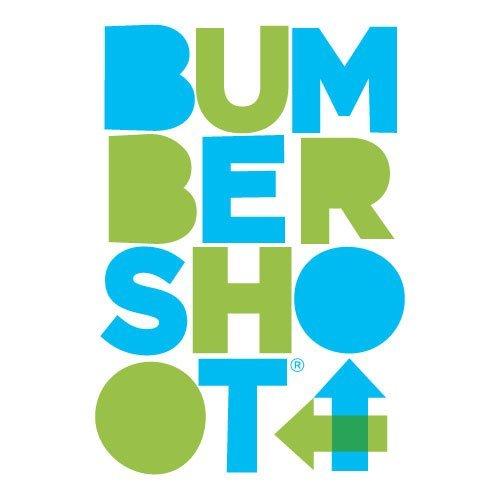 Bumbershoot in Seattle, WA.