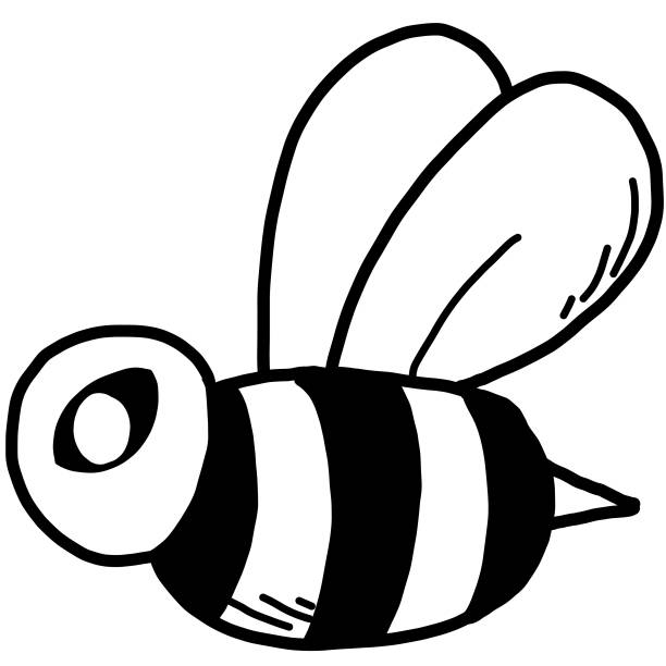 Best Black And White Bumble Bee Illustrations, Royalty.