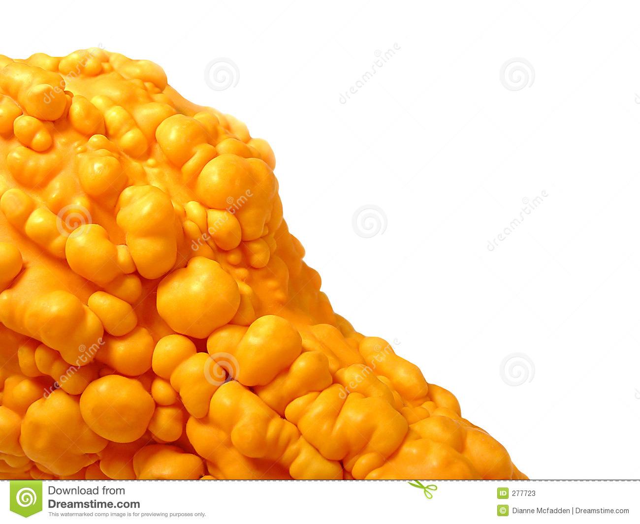 Orange Bumpy Gourd Stock Photos.