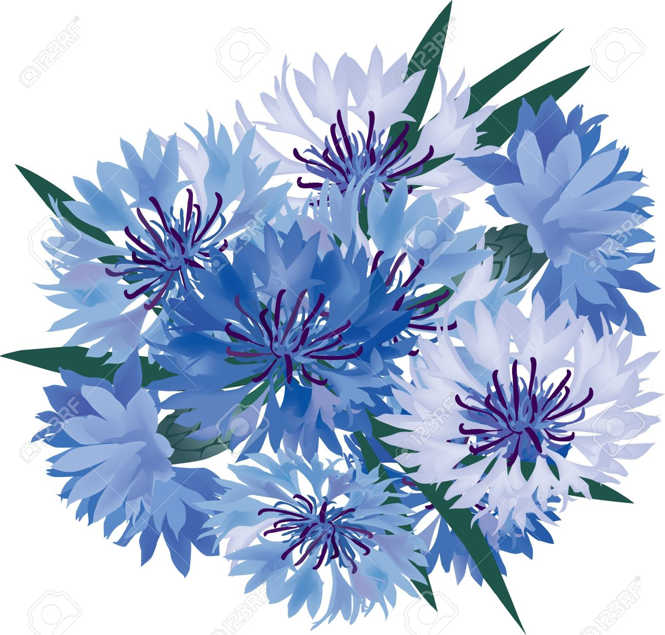 Flower Bouquet From Blue And Lilac Cornflower Royalty Free.