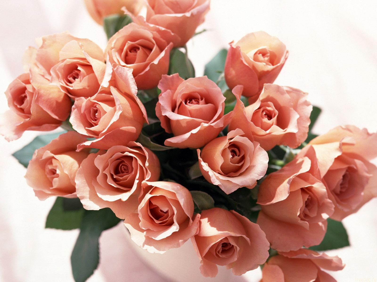 Roses Bunch Wallpapers.