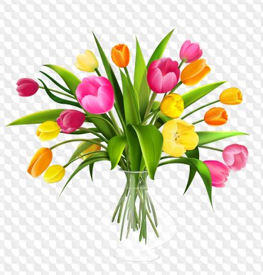 Drawn flowers png images, bouquets png and flower compositions.