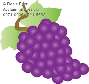 Clip Art Illustration Of A Bunch Of Purple Grapes.