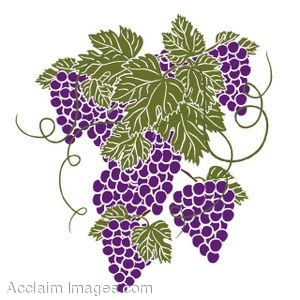Clip Art of Bunches of Grapes With Leaves.