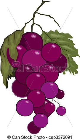 Clipart of bunches of grapes with leaves.