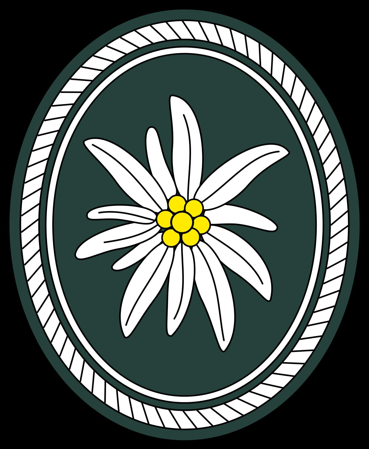 1st Mountain Division (Bundeswehr).