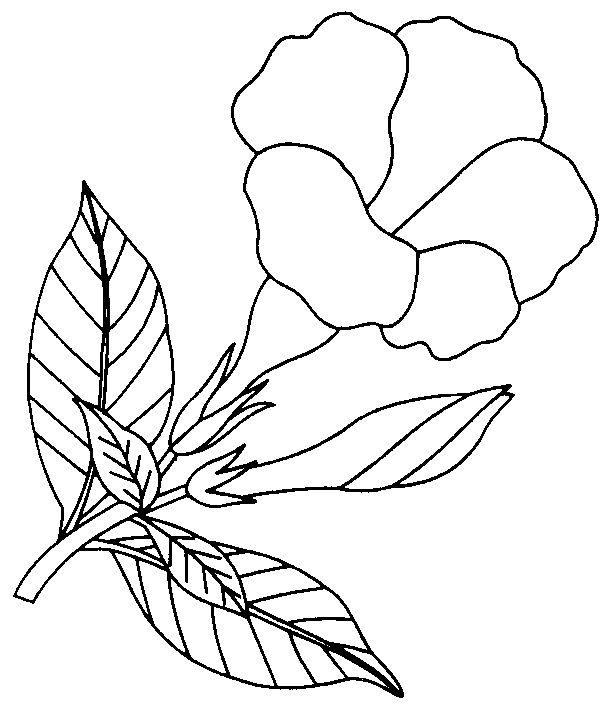 Download Clip Art Bunga.