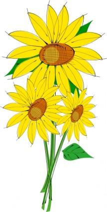 Bunga Matahari Clip Art.