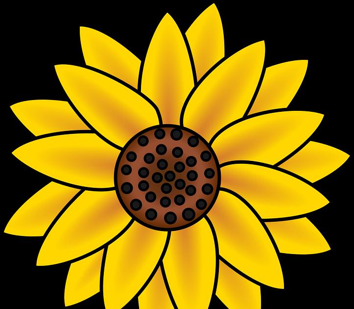 39+ Gambar Bunga Matahari Vektor, Tergokil!.