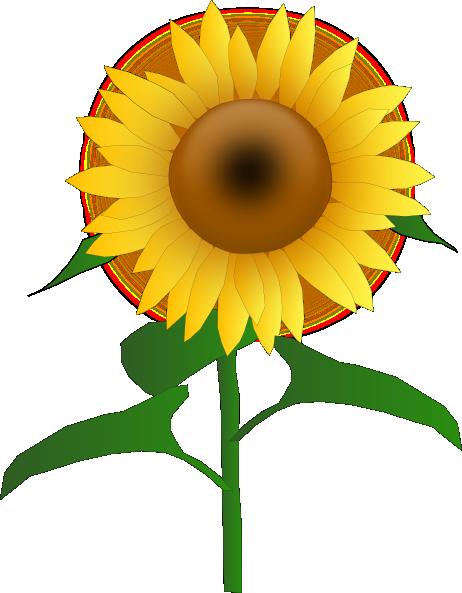 Clipart bunga matahari 2 » Clipart Station.