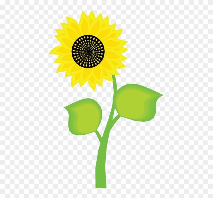 Sunflower Clipart Bunga Matahari.