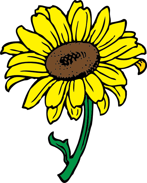 Gambar Cartoon Bunga Matahari.