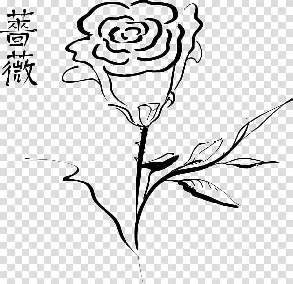 Black rose outline , Black rose , Tato Tribal Bunga Mawar.