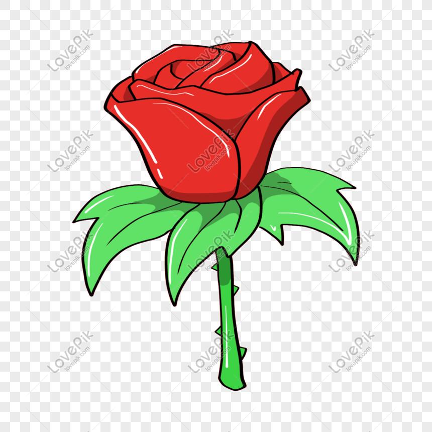 vektor bunga mawar merah gambar unduh gratis_ Grafik.