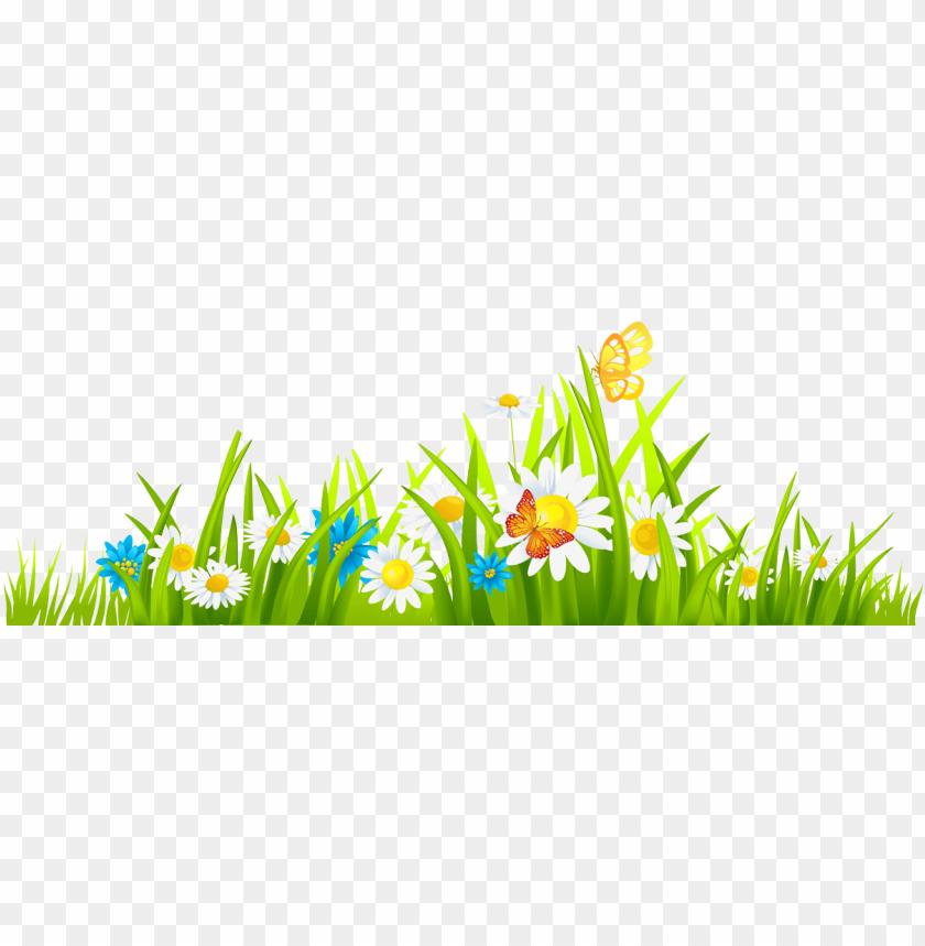 rumput bunga png.