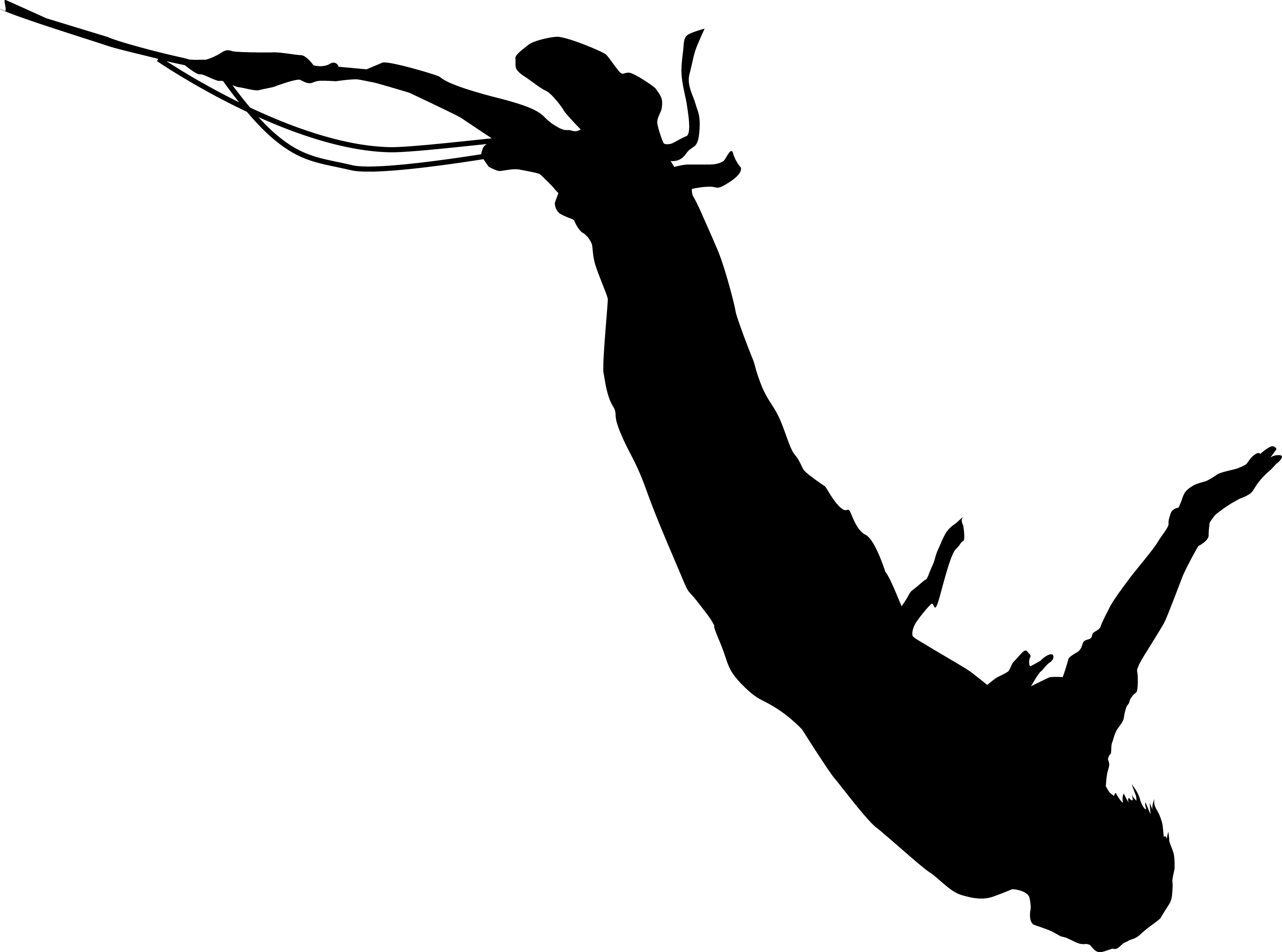 Quotes about Bungee Jumping (72 quotes).