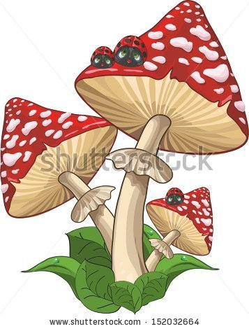 Giant Mushroom Stock Photos, Royalty.