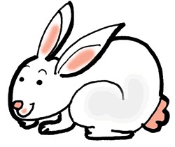 Moving bunny clip art bunny rabbit cartoon images clip art and.