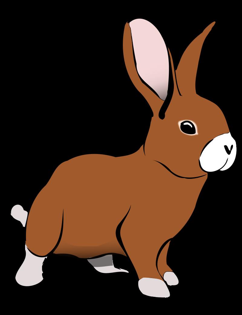 Rabbit Hare Clip art.