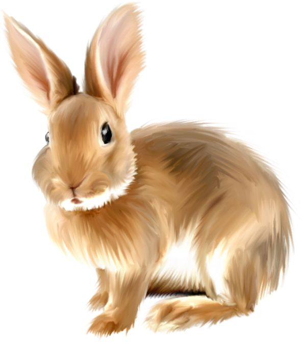 9650 Bunny free clipart.