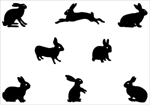 Bunny Graphic.