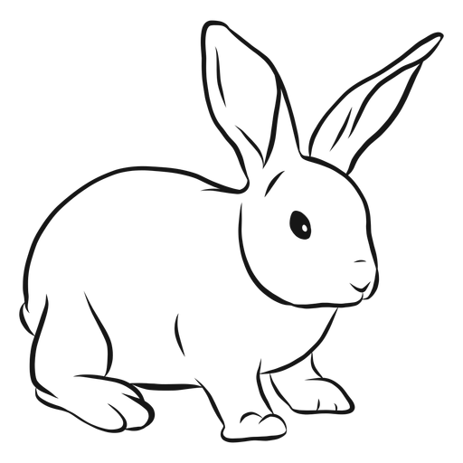 Bunny Nose Drawing.