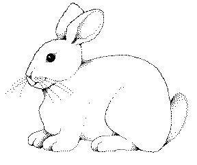 Rabbit Clip Art & Rabbit Clip Art Clip Art Images.