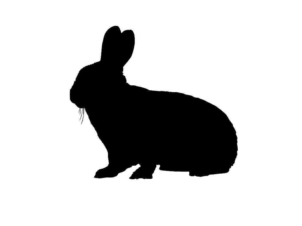 Free Bunny Silhouette, Download Free Clip Art, Free Clip Art on.