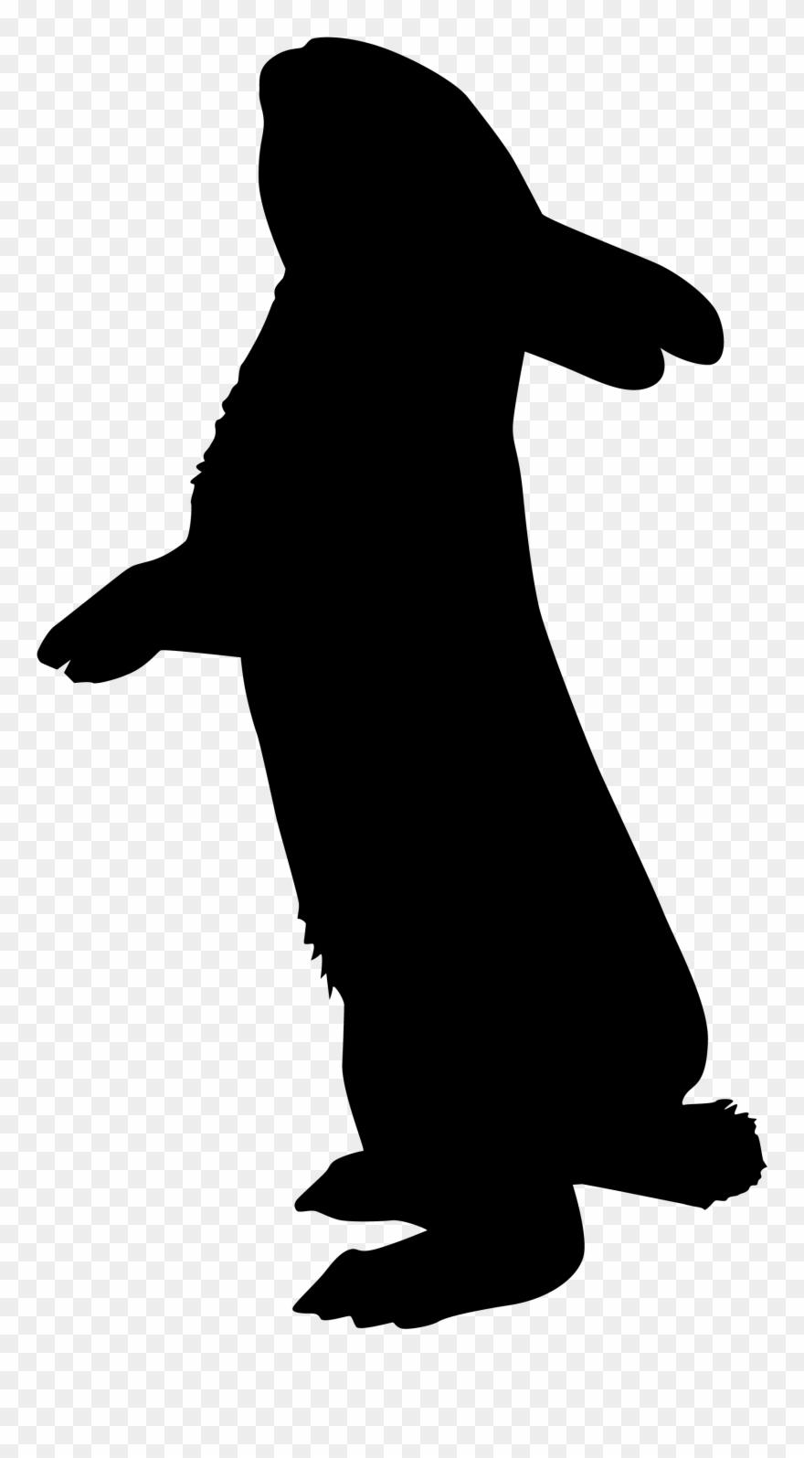 Recherche Google Rabbit Silhouette, Silhouette Art,.