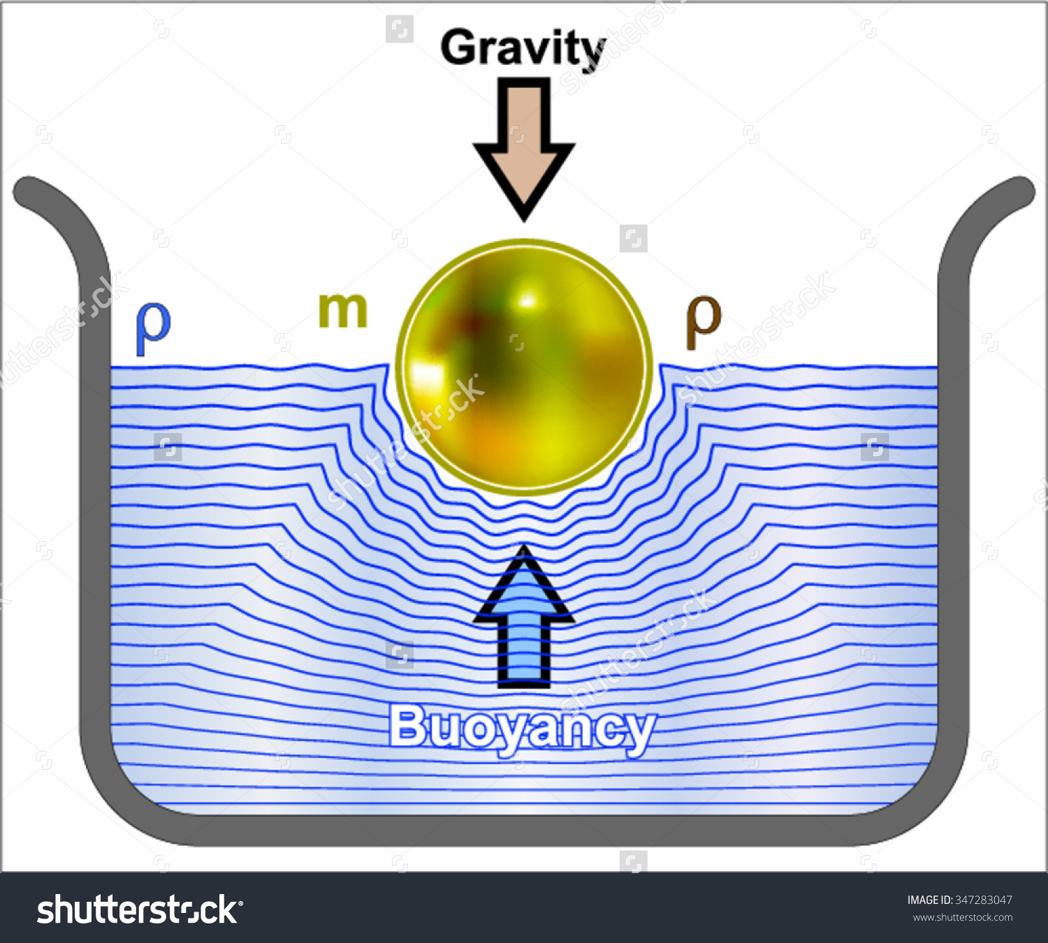 Buoyancy Buoyant Force Stock Vector 347283047.