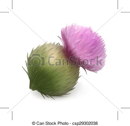 Burdock Vector Clip Art Royalty Free. 56 Burdock clipart vector.