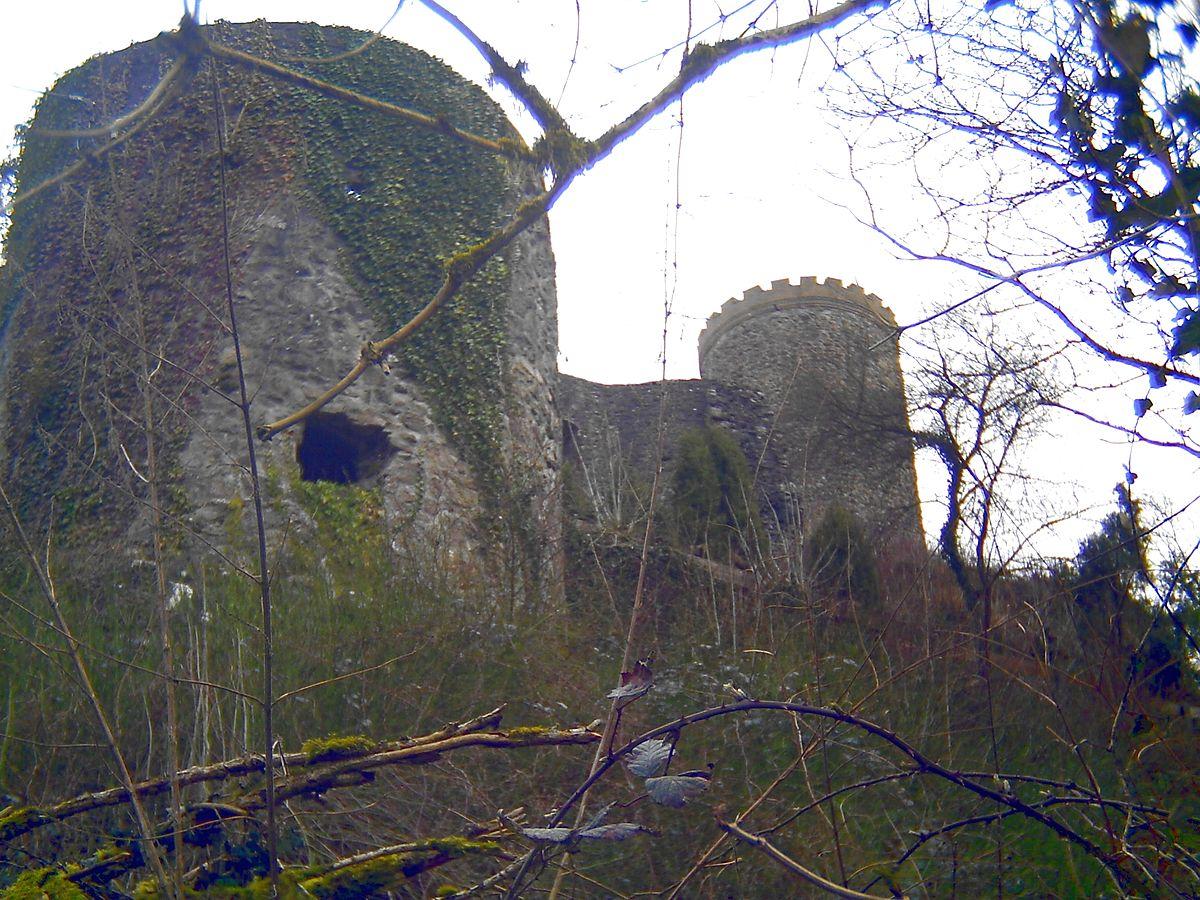 Husen Castle (Hausach).