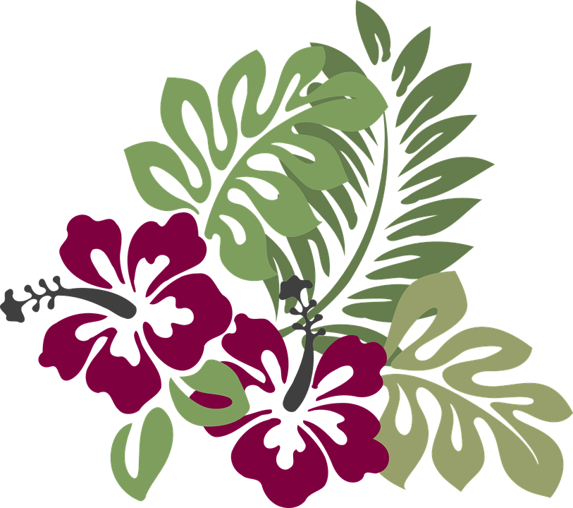 Free vector graphic: Hibiscus, Burgundy, Foliage.