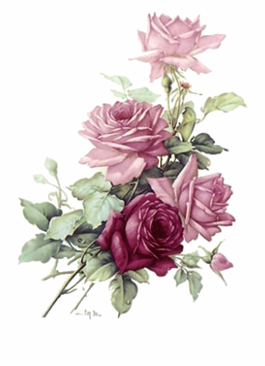 Pink Roses Vintage Png.