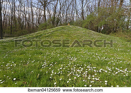 Stock Photograph of Late Bronze Age burial mounds in the.