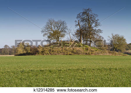 Stock Illustration of Tree covered neolithic burial mound.