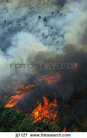 Stock Photography of Aerial of rainforest being burned to clear.