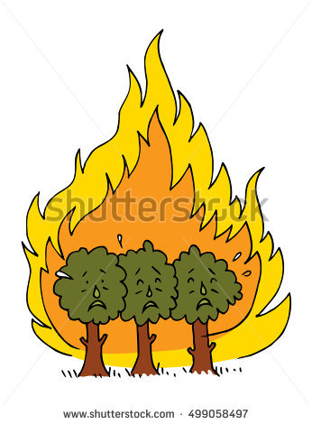 Forest Fire Stock Photos, Royalty.