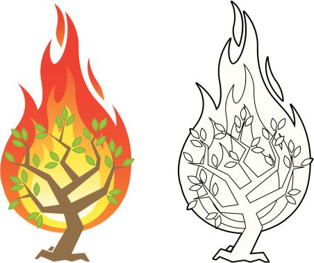 Vector illustration of the burning bush from the Biblical account of.