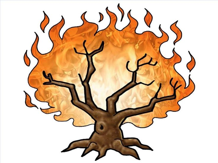 Download burning bush clipart Book of Exodus Bible Burning bush.