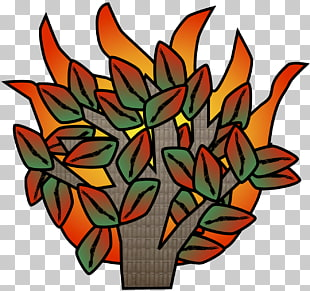 Floral design Cut flowers Leaf, burning bush PNG clipart.