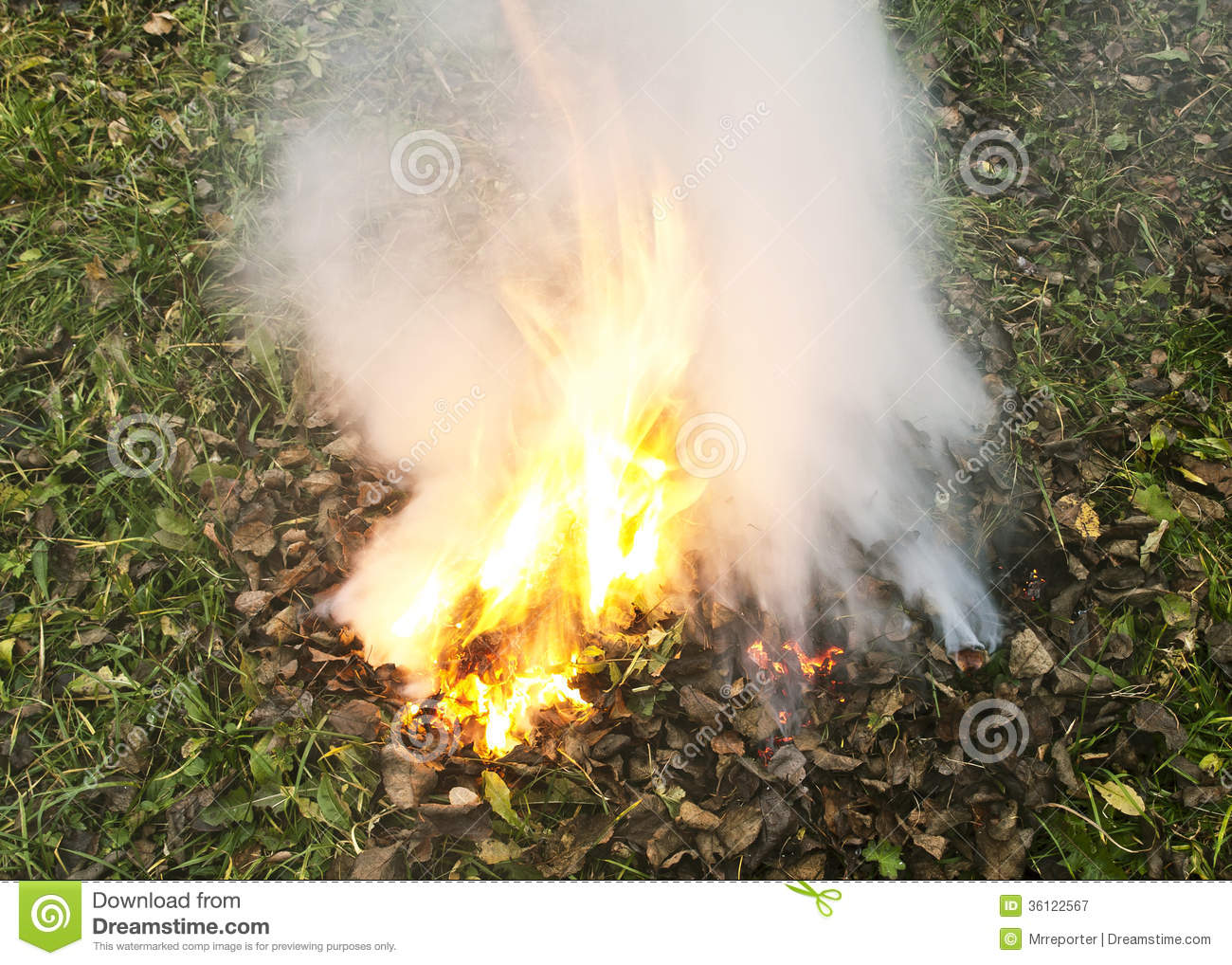 Fire Burning Dry Leaves Stock Photos, Images, & Pictures.