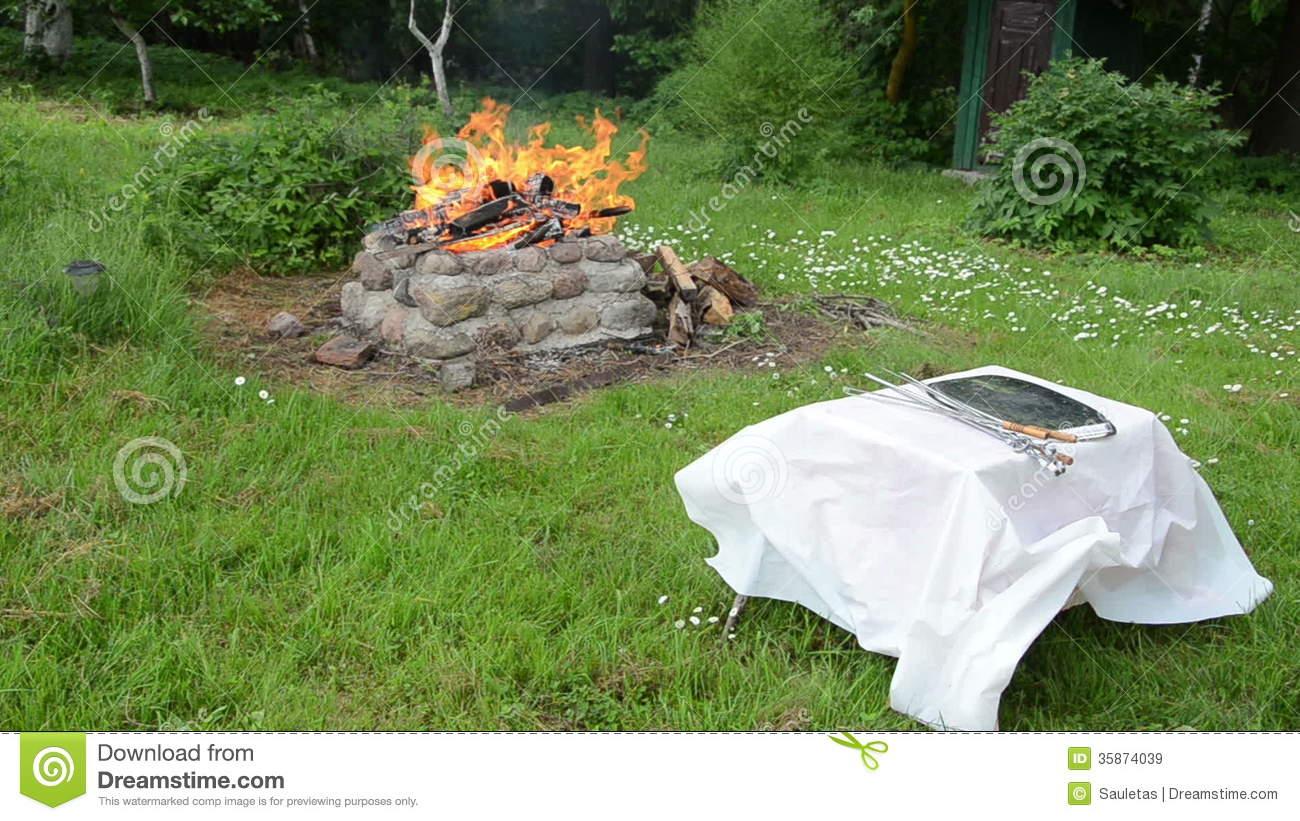 Fireplace Bush Stock Footage.