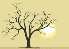 Burning Bush Banner Stock Illustrations, Vectors, & Clipart.