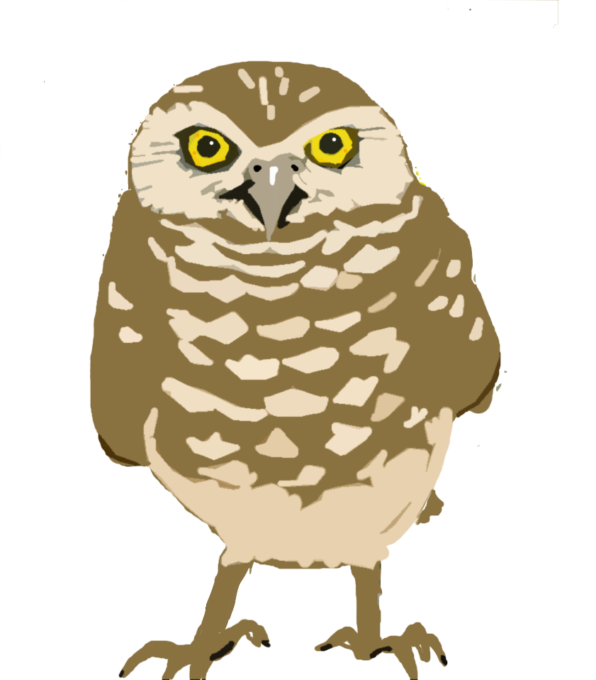 Poetry owl clipart.