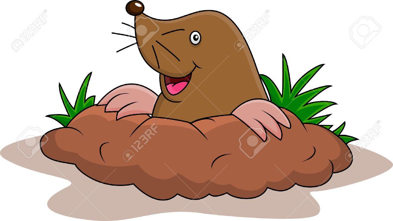 E Happy Mole Cartoon Royalty Free Cliparts, Vectors, And Stock.