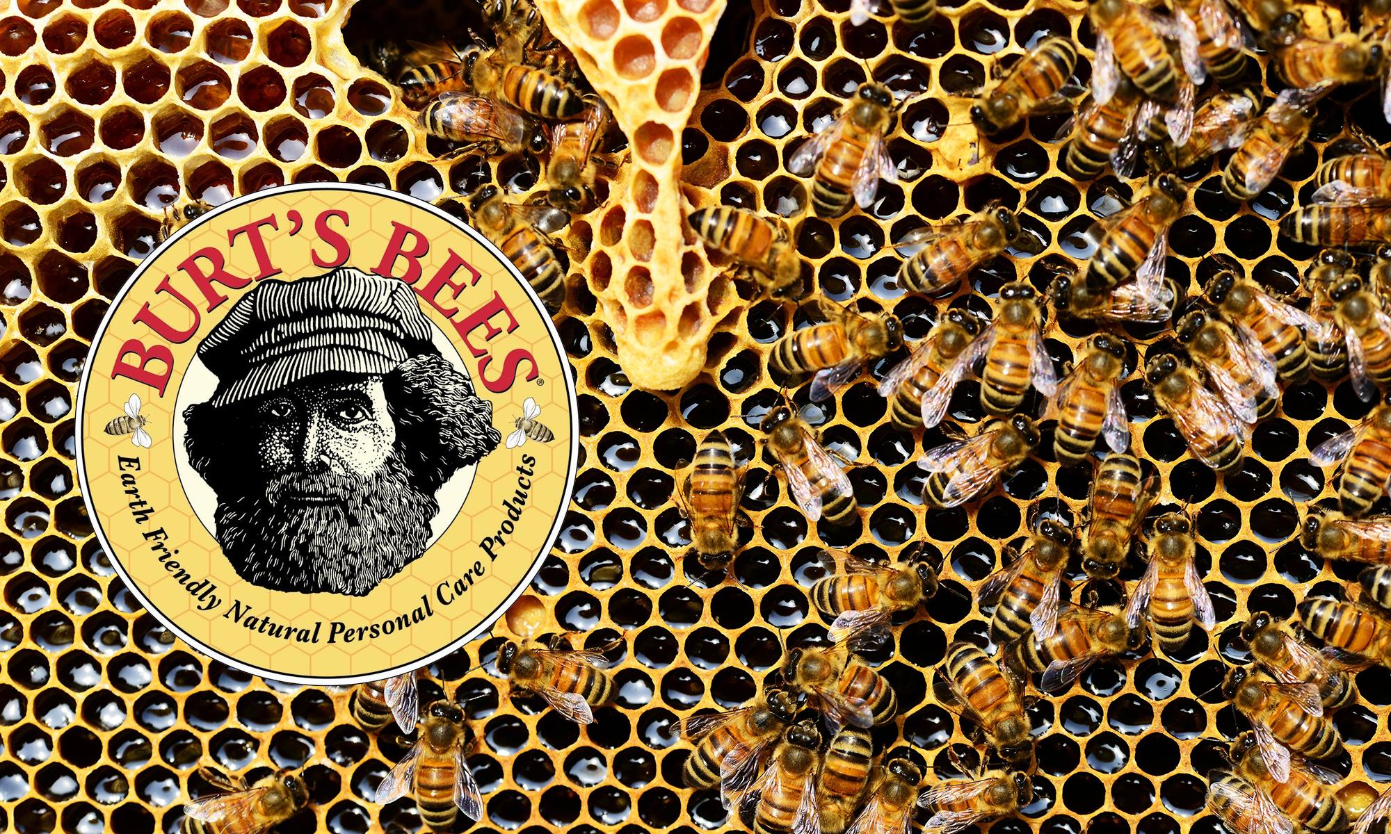 Burt\'s Bees case study.