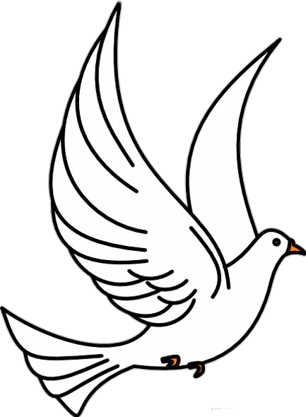 Christian Clip Art Pigeons and doves Vector graphics.